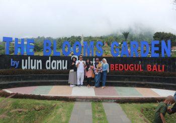 The Blooms Garden Bedugul Bali, Lokasi dan Harga Tiket Masuk 2021