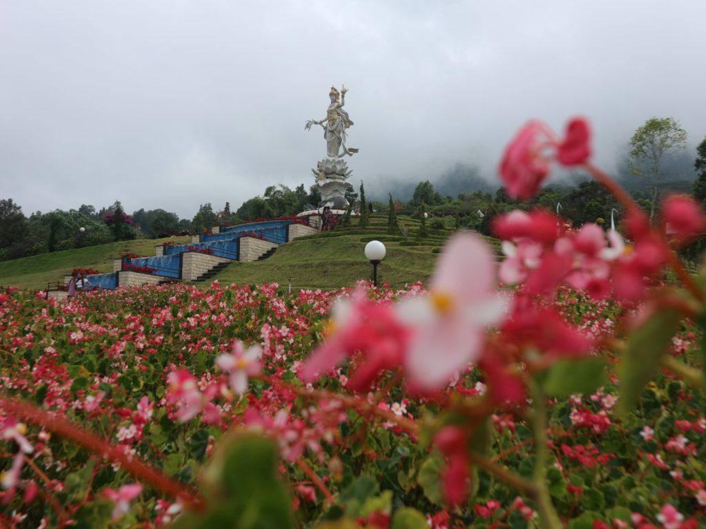 the blooms garden bedugul bali